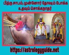 பித்ரு சாபம், முன்னோர் தோஷம் போக்க உதவும் சொக்கநாதர்