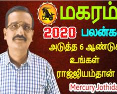 மகரம் 2020-ஆம் ஆண்டு பலன்கள்: அடுத்த 6 ஆண்டுகள் உங்கள் ராஜ்ஜியம்தான்.