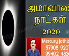 அமாவாசை தேதிகள் - 2020
