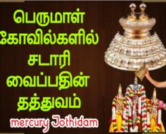 பெருமாள் கோவில்களில் சடாரி வைப்பதின் தத்துவம்