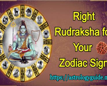 Right Rudraksha for Your Zodiac Sign