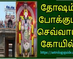 தோஷம் போகும் செவ்வாய் கோவில்