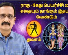 துலாம் ராகு - கேது பெயர்ச்சி 2020: எதையும் தாங்கும் இதயம் வேண்டும்