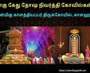 ராகு, கேது - நாக தோஷ நிவர்த்தி தலம் - 1 அருள்மிகு காளத்தியப்பர் திருக்கோயில், காளஹஸ்தி