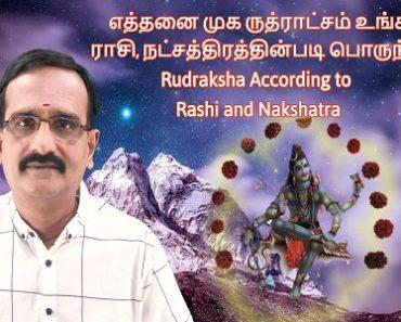 எத்தனை முக ருத்ராட்சம் உங்கள் ராசி, நட்சத்திரத்தின்படி பொருந்தும் - Rudraksha for Rashi & Nakshatra